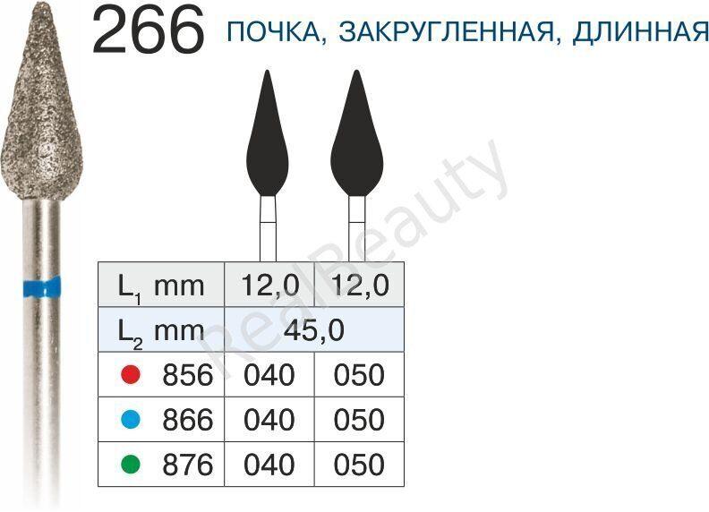 266 ПОЧКА ЗАКРУГЛЕННАЯ, ДЛИННАЯ